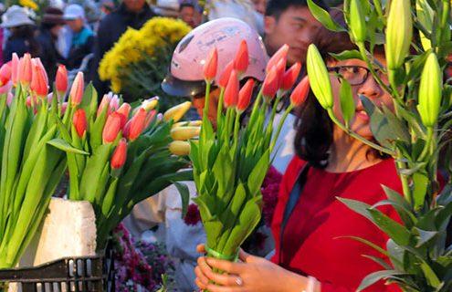 Lung Flower Market