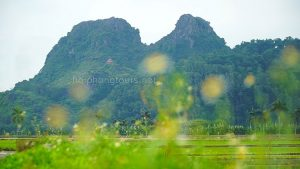 elephant mountain an lao hai phong