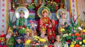 Tam Phu