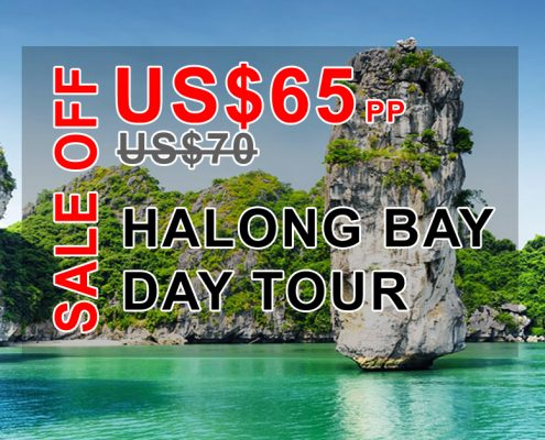 Sale off Halong bay day tour