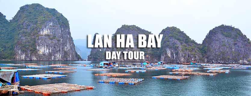 Hai Phong Lan Ha bay day tour